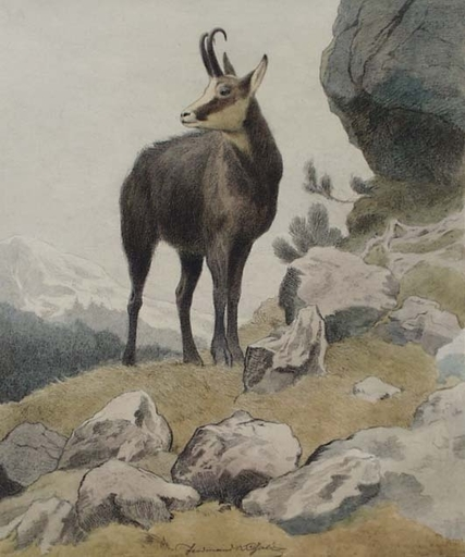 "Ferdinand Karl GOLD - Painting - ""Chamois in Mountains"" by Ferdinand Karl Gold, ca1920"