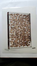 Fernandez ARMAN - Sculpture-Volume - Accumulazione di monete in resina
