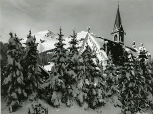 Emil MEERKÄMPER - Fotografie - Wenn über Nacht der Winterflaum zur Erde fällt. Davos.
