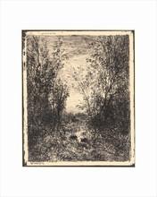 Charles François DAUBIGNY - Print-Multiple - Le Ruisseau dans la Clairière