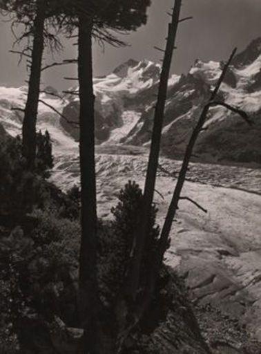 Albert STEINER - Fotografie - Piz Bernina und Morteratschgletscher