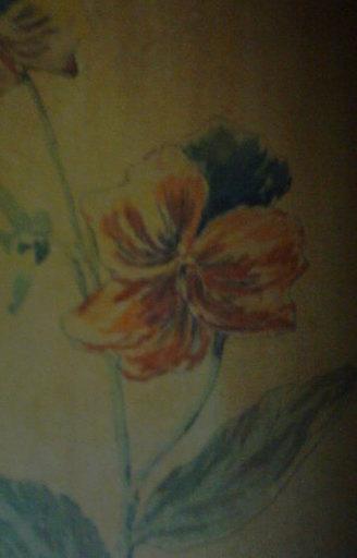 Gustave FRANTZEN - Dibujo Acuarela - Bouquet