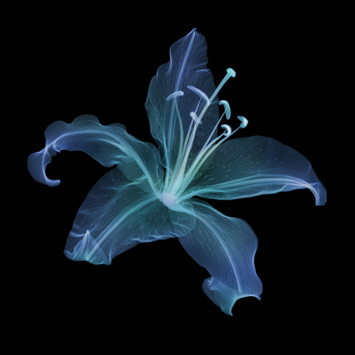Nick VEASEY - Fotografie - Lily Coloured