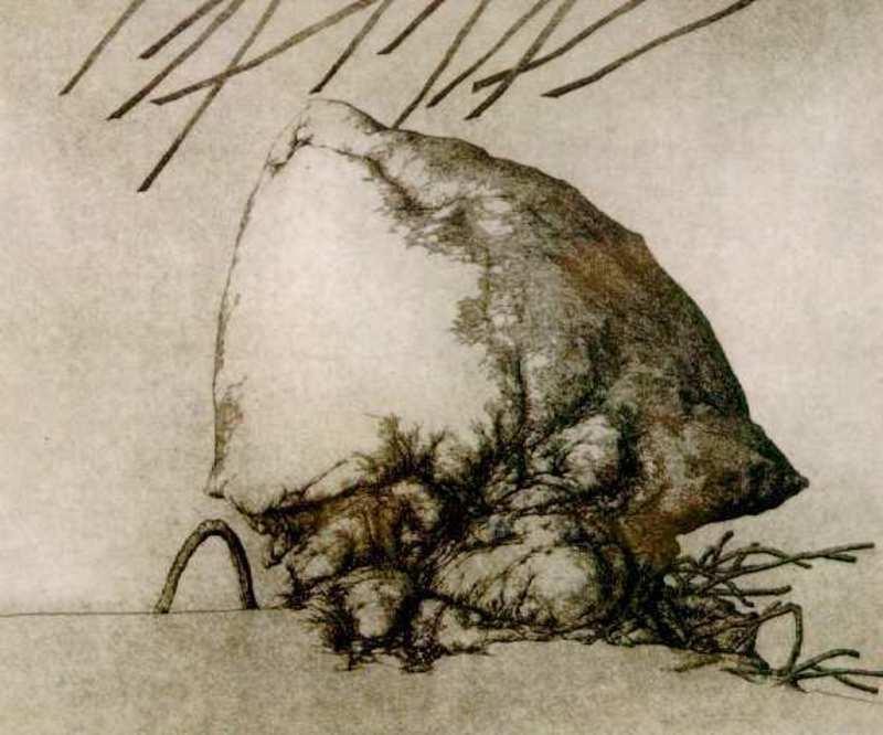 José HERNÁNDEZ - 版画 - Larva V