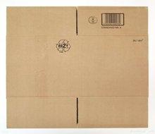 Matias FALDBAKKEN - Estampe-Multiple - Box 2