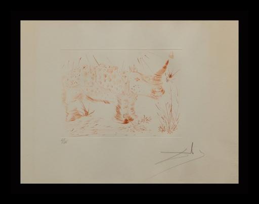 Salvador DALI - Grabado - Album Rhinoceros