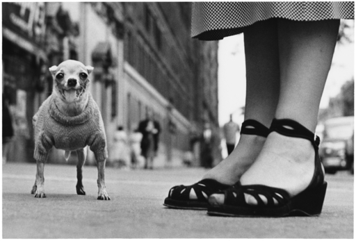 Elliott ERWITT - Photo - New York City, 1946
