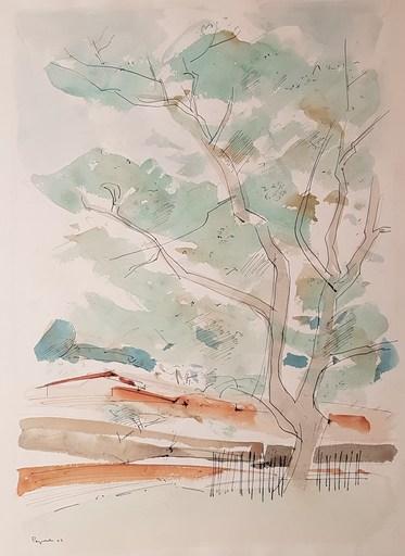 Max PAPART - Dessin-Aquarelle -  Paysage en Provence