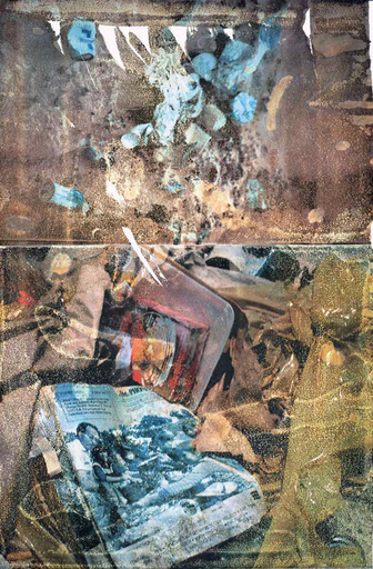 Robert RAUSCHENBERG - Stampa Multiplo - Peace