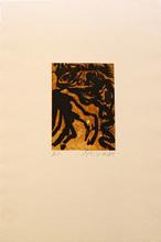 Emil SCHUMACHER - Print-Multiple - 5/1995