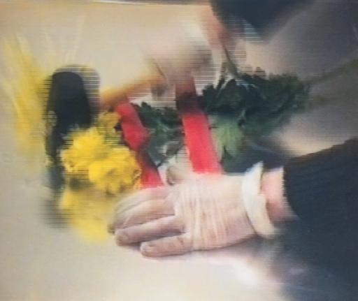 Pascal BERNIER - Photography - F.S.K. (Flower Serial Killer no 9)