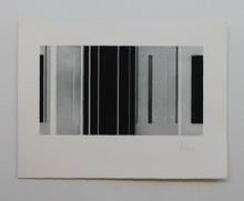 Luc PEIRE - Print-Multiple - VESANT