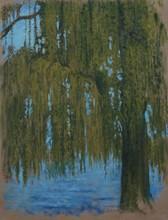 Carlos ESTEBAN - Painting - Le motif du saule 1    (Cat N° 3441)