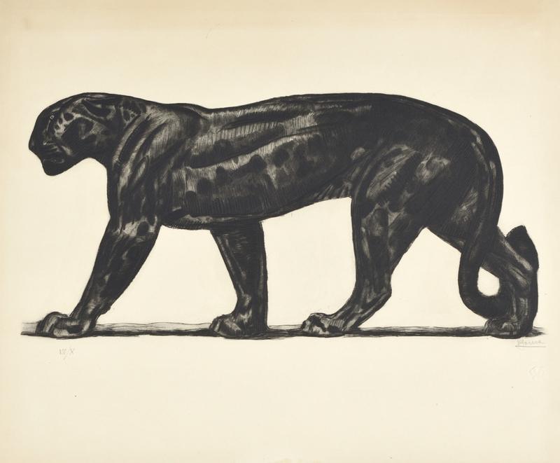 Paul JOUVE - Grabado - Panthère noire de profil