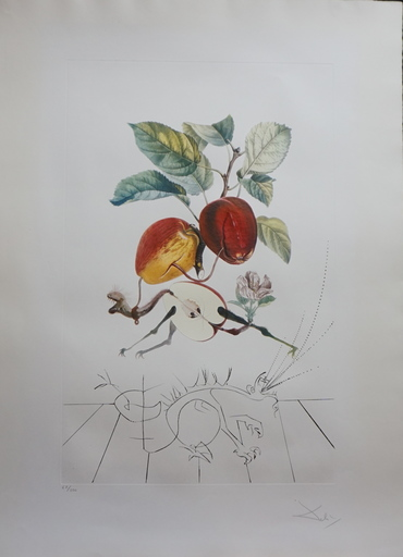 Salvador DALI - Estampe-Multiple - FlorDali/Les Fruits Eve's Apple