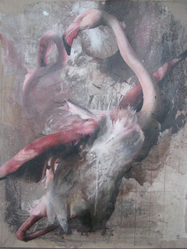 Hélène LEGRAND - Painting - Flamands roses