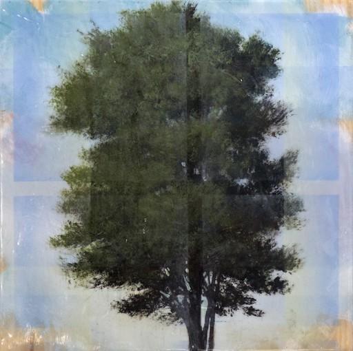 Peter HOFFER - Peinture - Tree Through Window Pane
