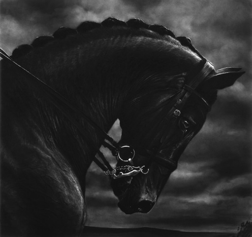 Robert LONGO - Stampa-Multiplo - Untitled (Bucephalus)