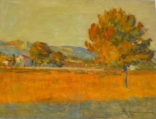 Attilio GUFFANTI - Gemälde - Prairie en été