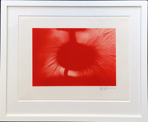 Anish KAPOOR - Stampa Multiplo - Without Title