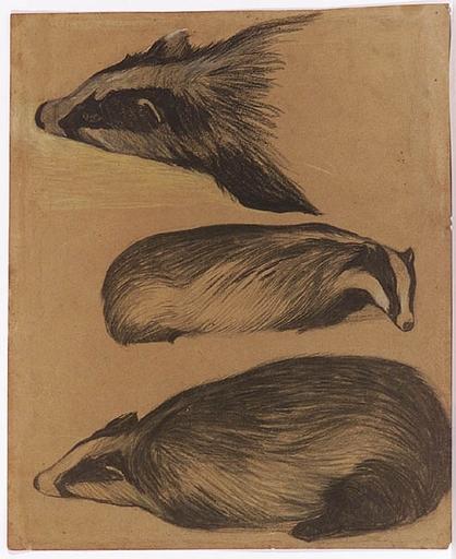 "Rudolf STOITZNER - Zeichnung Aquarell - ""Animalist Studies"", Drawing, early 20th Century"
