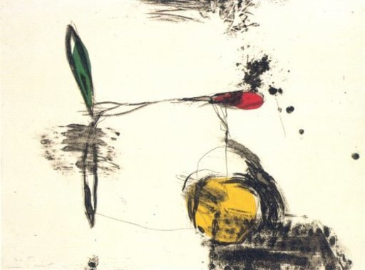 Joseph RIERA I ARAGO - Grabado - Avió roda groga