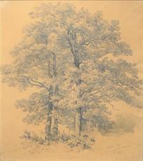 Robert ZÜND - Drawing-Watercolor - Baumgruppe