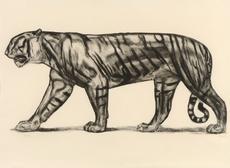 Paul JOUVE - Grabado - Tigre