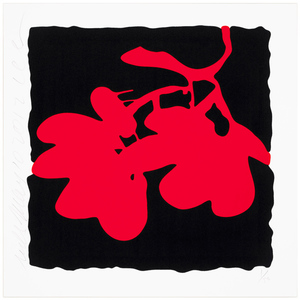 Donald SULTAN - Print-Multiple - Red, May 10, 2012