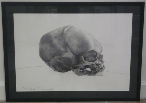 David NICHOLSON - Drawing-Watercolor - Baby Skull