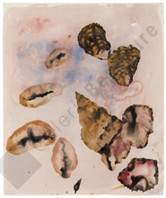 Miquel BARCELO (1957) - Planche de Coquillage et Huitres