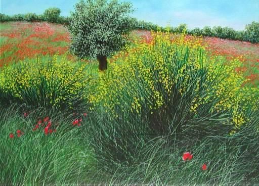 Franco AZZINARI - Pintura - Ginestre
