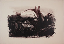 Pietro ANNIGONI - Grabado - Paesaggio annigoniano