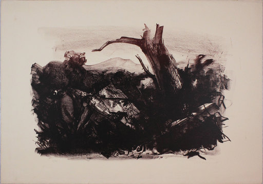Pietro ANNIGONI - Estampe-Multiple - Paesaggio annigoniano