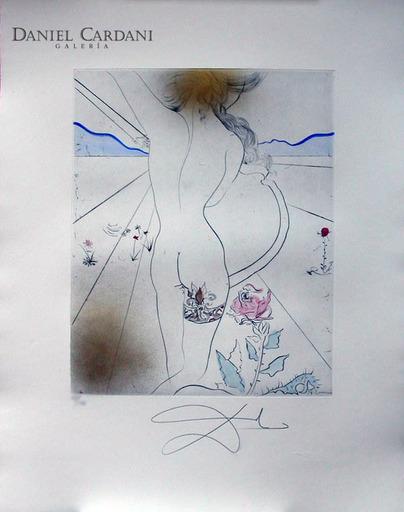 Salvador DALI - Grabado - Les Hippies (11 prints)
