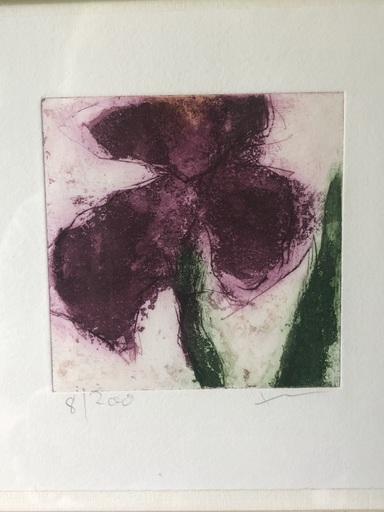 Klaus FUSSMANN - Estampe-Multiple - Blumen Iris