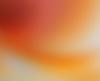 Paul SNELL - Fotografia - Bleed # 202009