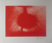 阿尼什·卡普尔 (1954) - Untitled