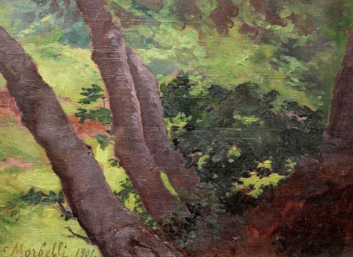 Angelo MORBELLI - Pintura - Studio di alberi (1901)