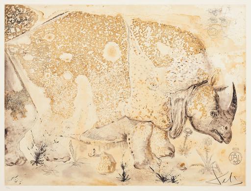 Salvador DALI - Grabado - Rhinocéros