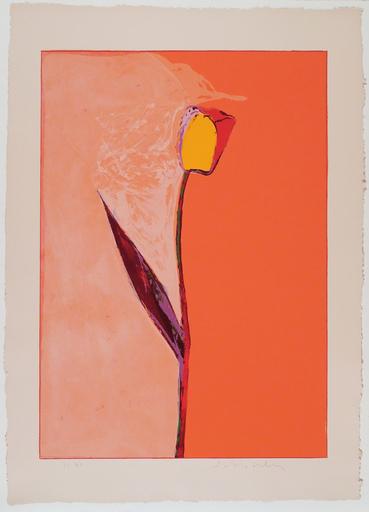 Fritz William SCHOLDER - 版画 - Tulip (lithograph)