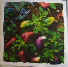 Piero GILARDI - Print-Multiple - Food Carpet (2004)