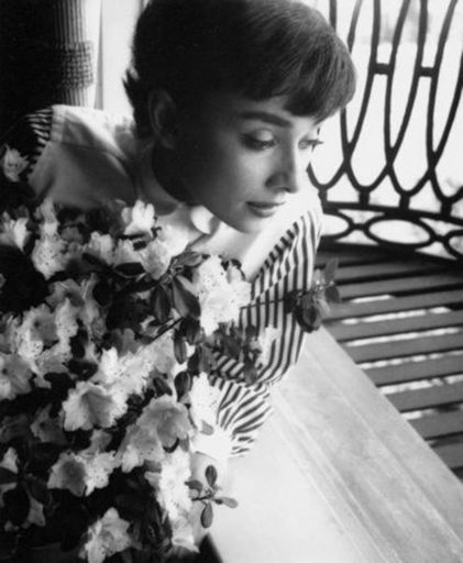 Bob WILLOUGHBY - Grabado - Audrey Hepburn window