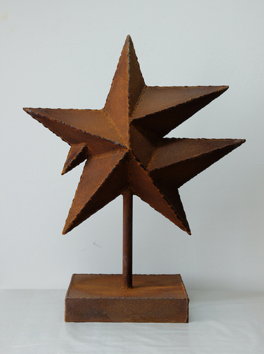 Rinat VOLIGAMSI - Sculpture-Volume - Star 11