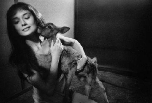 Bob WILLOUGHBY - Grabado - Audrey Hepburn and deer