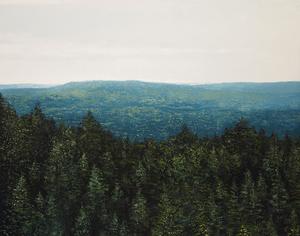 Benoît TRIMBORN - Peinture - Mont Saint Odile