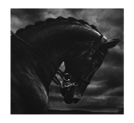 罗伯特•隆戈 - 版画 - Bucephalus