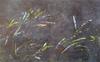 Bruno GADENNE - Pintura - L'arc en ciel