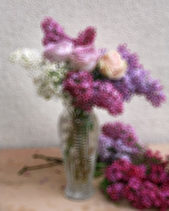 Annie BARDOULAT - Fotografia - Lila et roses 7