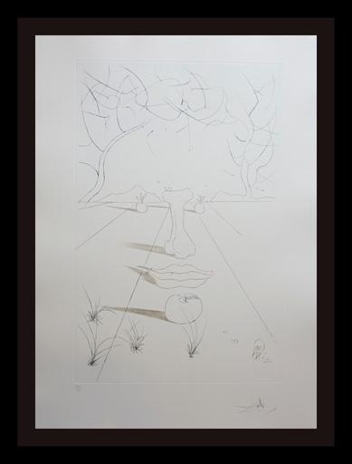 Salvador DALI - Grabado - Aurelia Visage Surrealiste